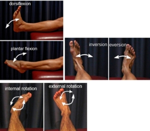 足の動き2